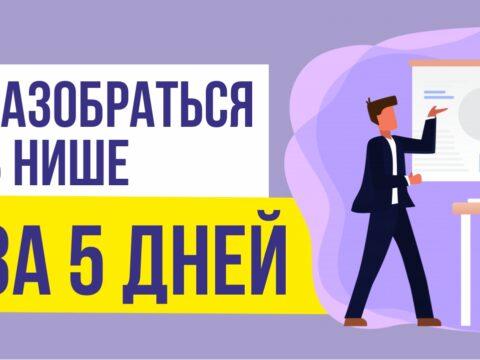 как разобраться в нише за 5 дней и начать продавать Евгений Гришечкин